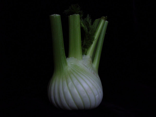 Fresh fennel