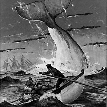 ilustration of Moby Dick with the whale breaching and three men in a lifeboat struggling to escape