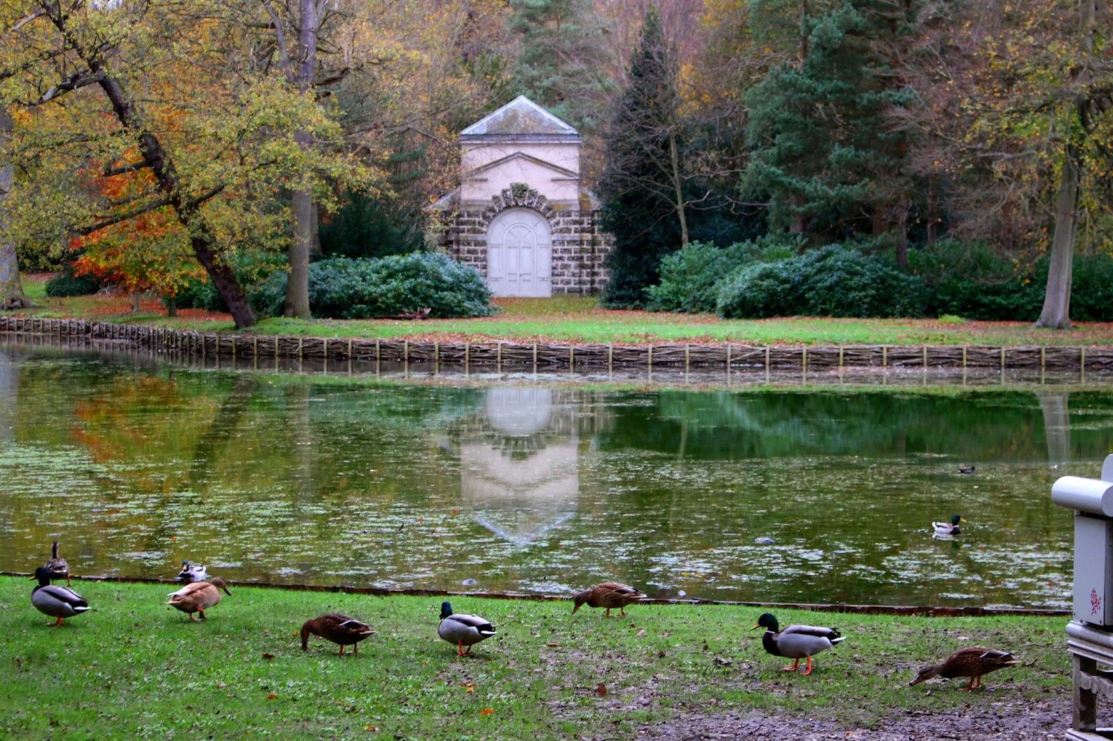 Claremont Landscape Garden Lake Photography
