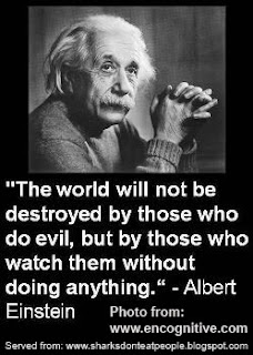 graphic statement evil wins when good men do nothing with photo of albert einstein