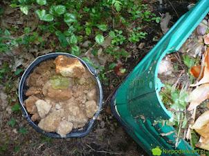 Kompost gliniasty – jak zrobić