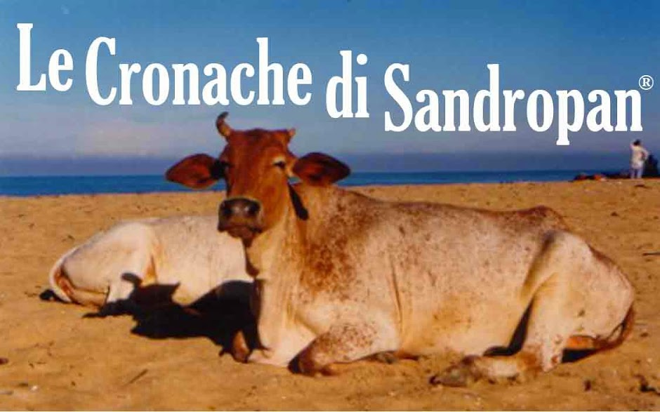 Le Cronache Di Sandropan