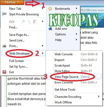 Cara Copy Paste Artikel Posting Blog Yang Di Proteksi