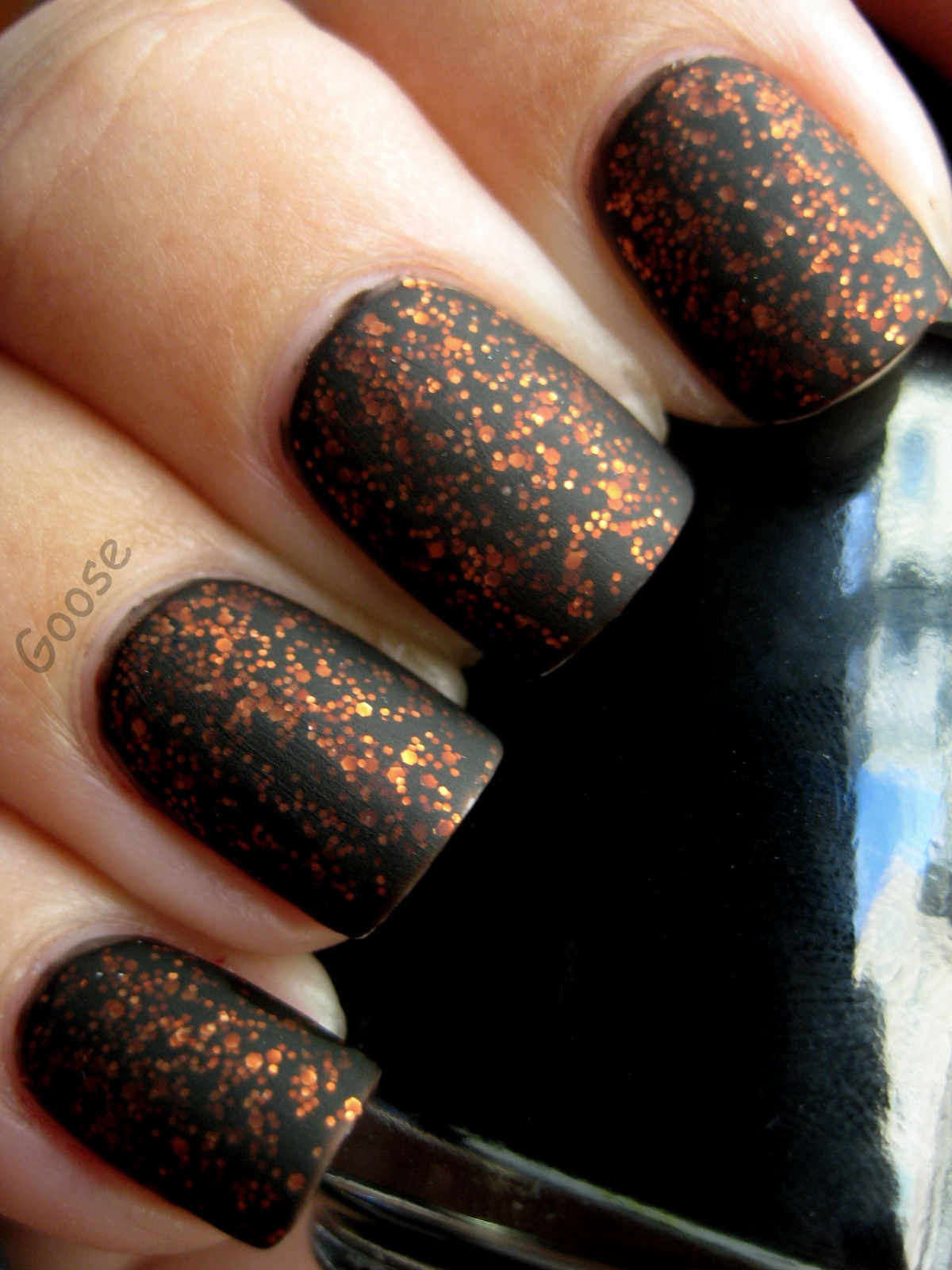 Goose\'s Glitter: Hawaiian Color Matte and Blitzen