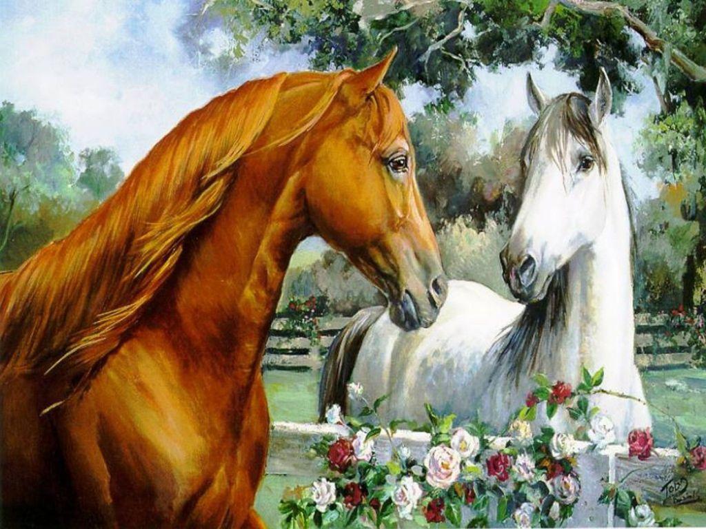 wallpapers hd fondos de pantalla de caballos varias