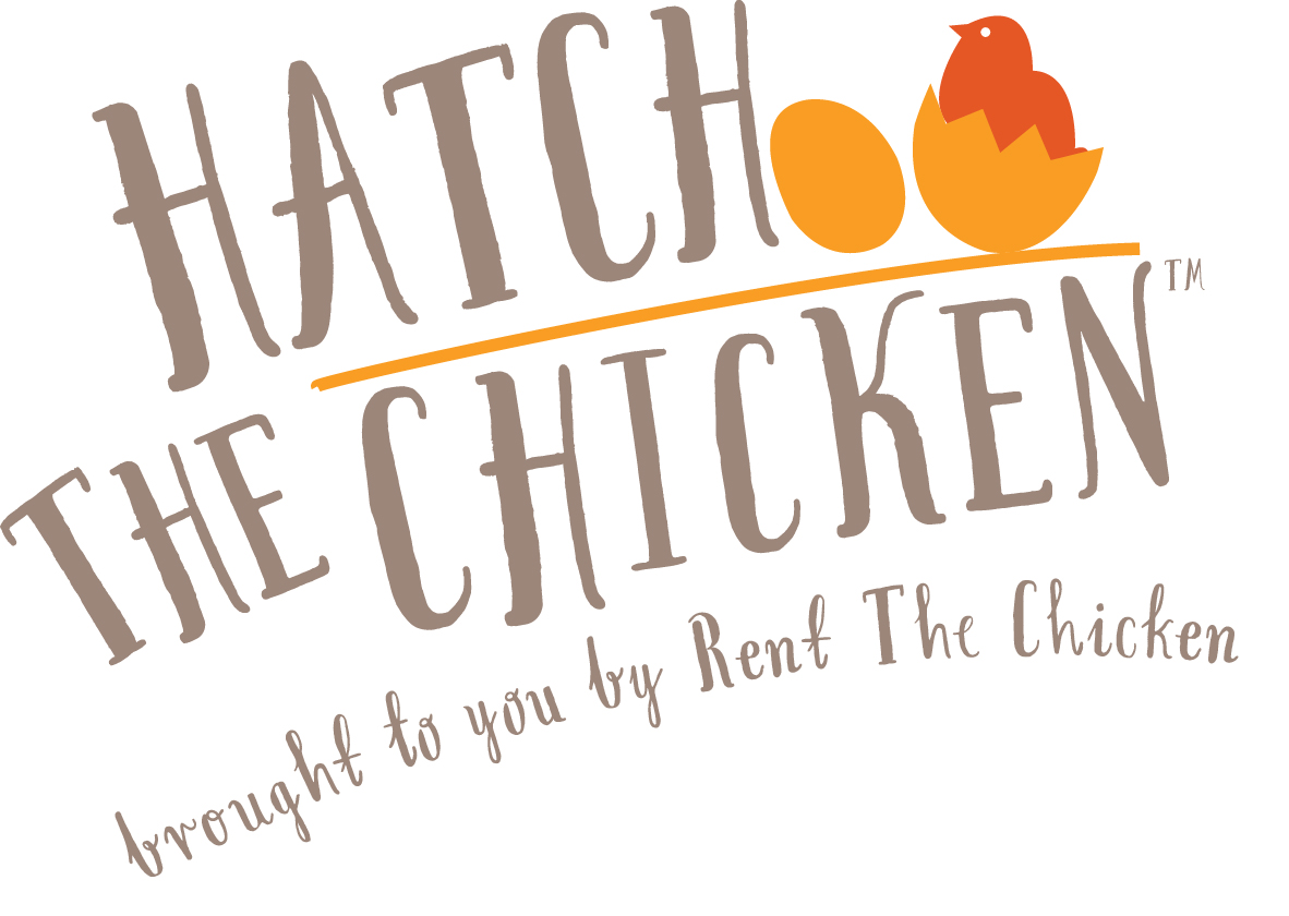 Ask us about Hatch The Chicken