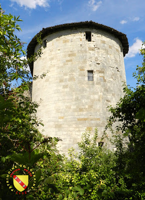 VOID-VACON (55) - Le château -Tour des Pigeons