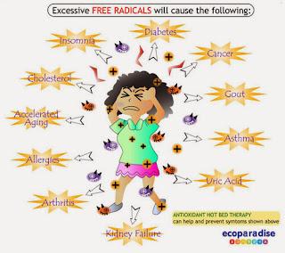 muscadine grape seed free radicals