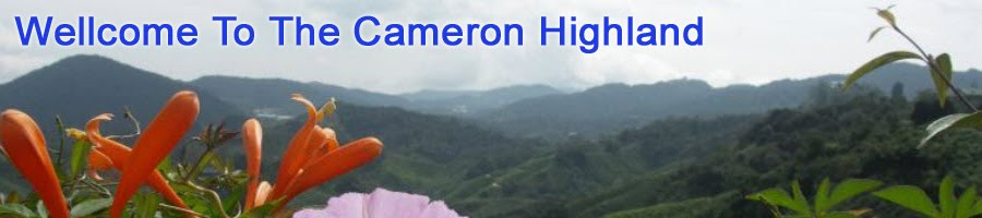 Cameron Highlands | cameron highlands Resort and Hotels