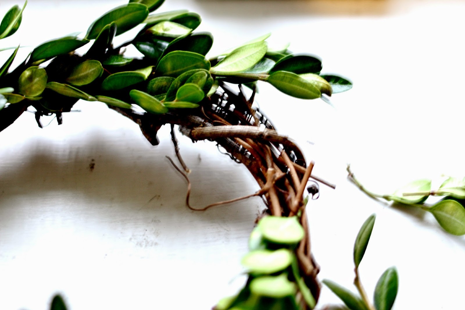 DIY boxwood wreath tutorial using grapevine wreath-www.goldenboysandme.com