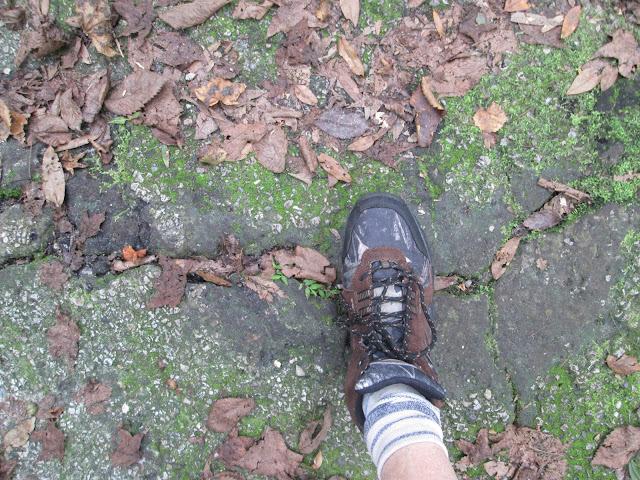 laceupandwalk.blogspot.com