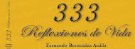 333 REFLEXIONES DE VIDA