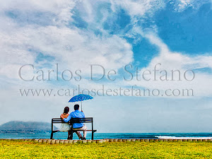 Carlos De Stefano - Web