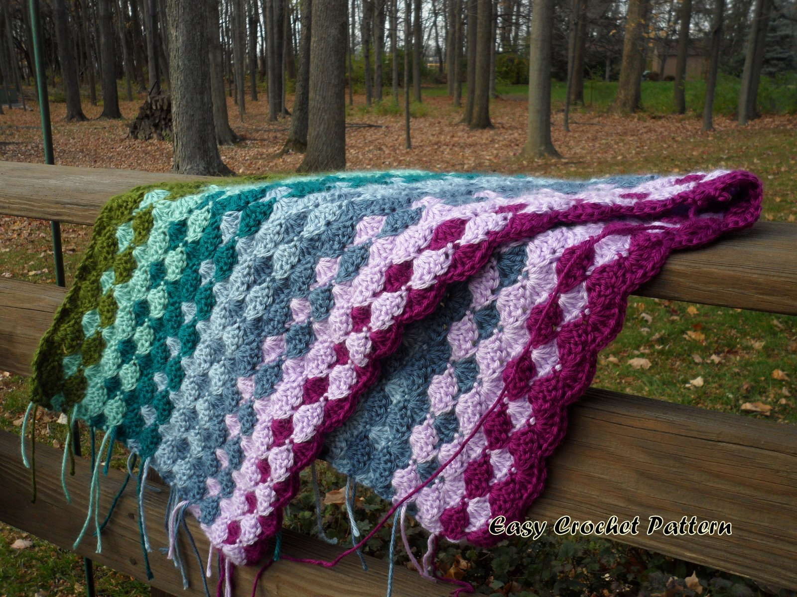 Easy Crochet Afghan Patterns : Easy Crochet Pattern: Shell Afghan: A New Project Started