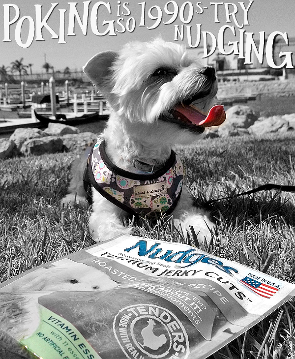 Nudges dog treats come in 4 delicious varieties of filler-free, made in the U.S.A protein that's FDA approved. Yes, you could even eat them! Create some #NudgesMoments today and pick up a package at a Walmart near you. #Shop