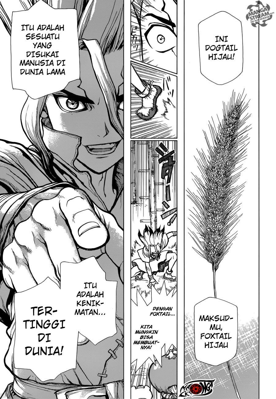 Dr. Stone Chapter 22-8