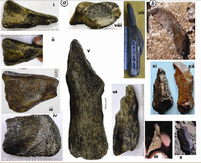 stone tools, stone artifacts, nethankhari stone tools, netankhari artifacts, Pleistocene tools india, mode 3 tools india, mode 3 tools Narmada valley