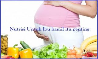 Pemenuhan Gizi pada ibu hamil