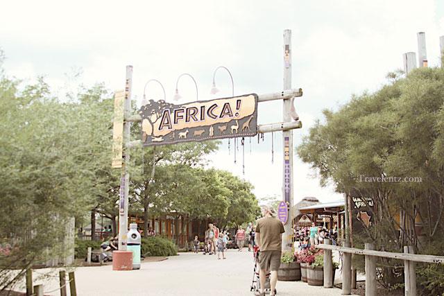 Toledo zoo coupons