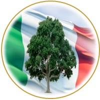 creare un albero genealogico