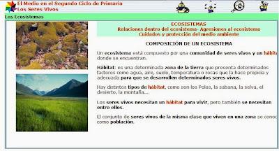 http://www.ceiploreto.es/sugerencias/juntadeandalucia/Costa21/seres/contenidos/ecos0.html