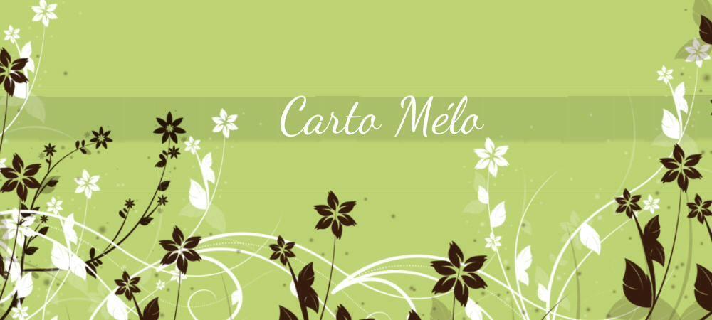 Bienvenue dans l'univers des milles et un souhait de Carto Mélo...