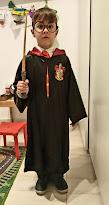 Mi pequeño Harry Poter
