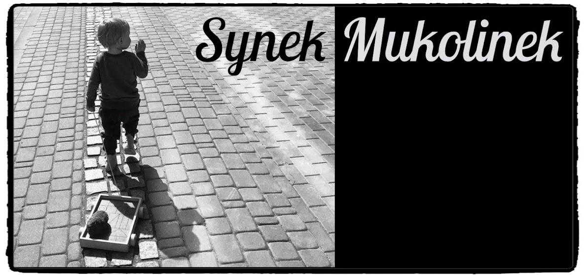 Synek Mukolinek