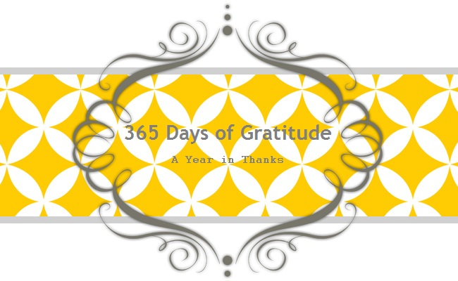 365 Days of Gratitude