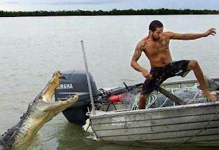 funny picture crocodile attacks man