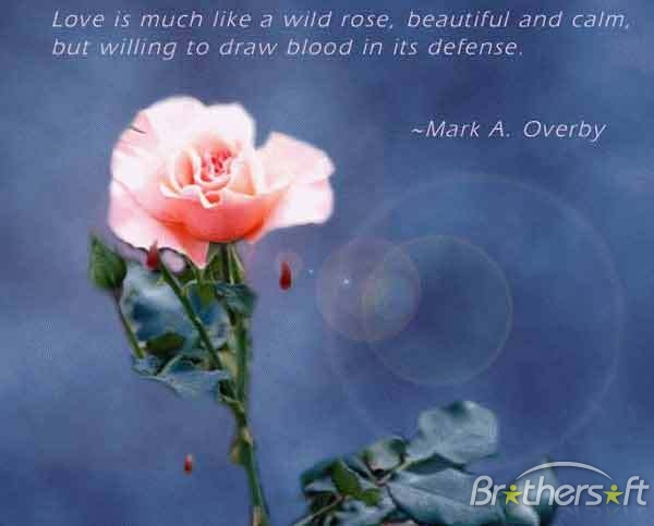 tattoo arts love poems and quotes and sayings