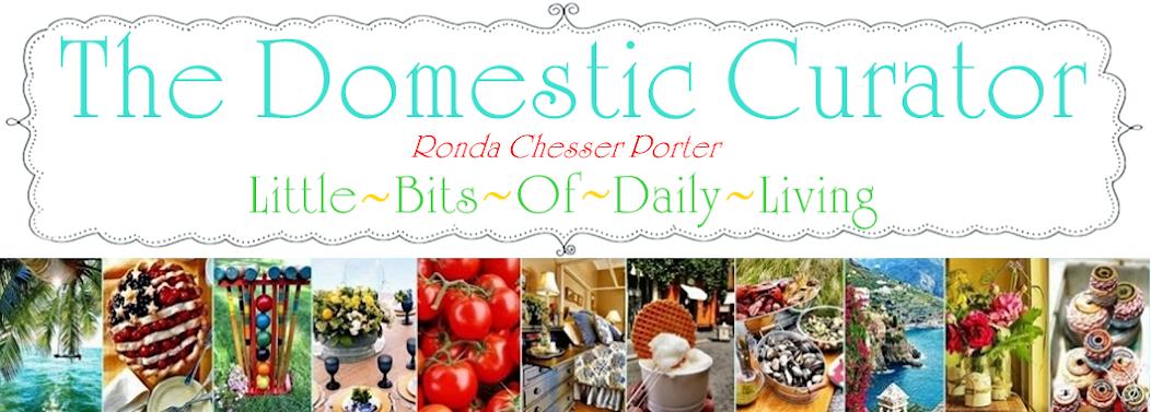 <center>The Domestic Curator</center>