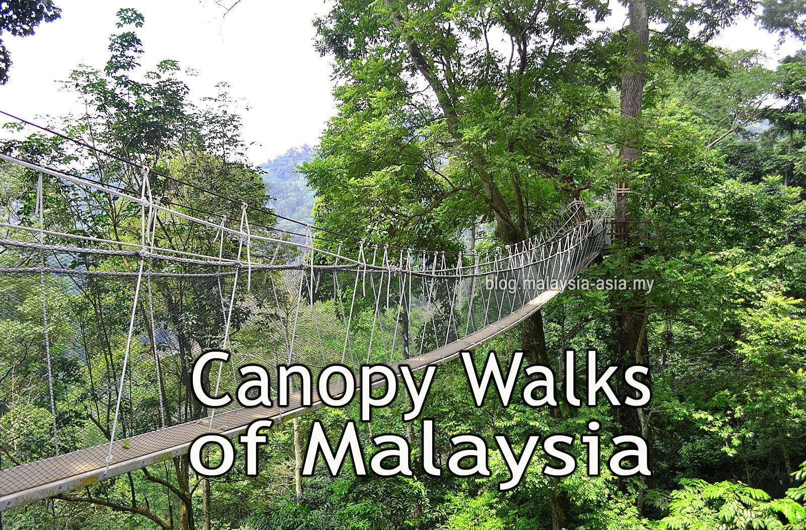 Canopy Walks in Malaysia & Canopy Walks in Malaysia - Malaysia Asia