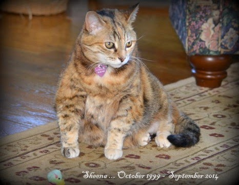 Our Princess 1999 - 2014