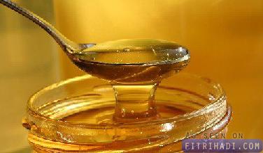 fakta kelebihan khasiat madu lebah