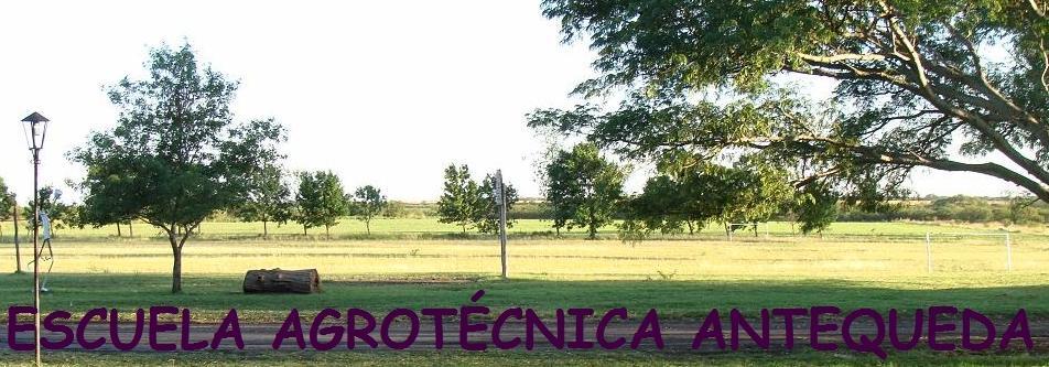 Escuela Agrotécnica Antequeda