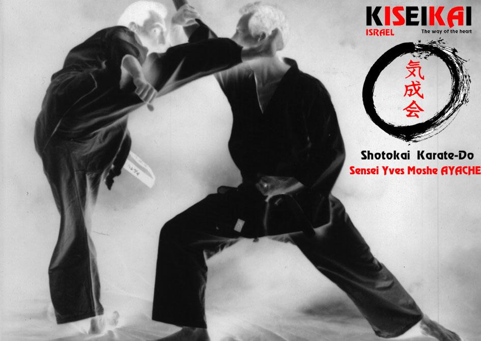 Israël Shotokai Karate-Do                   ישראל שוטוקאי קראטה דו