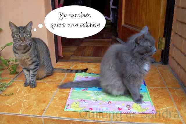Quilt para gata con gatitas