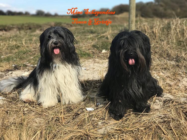 Grietje & Timon