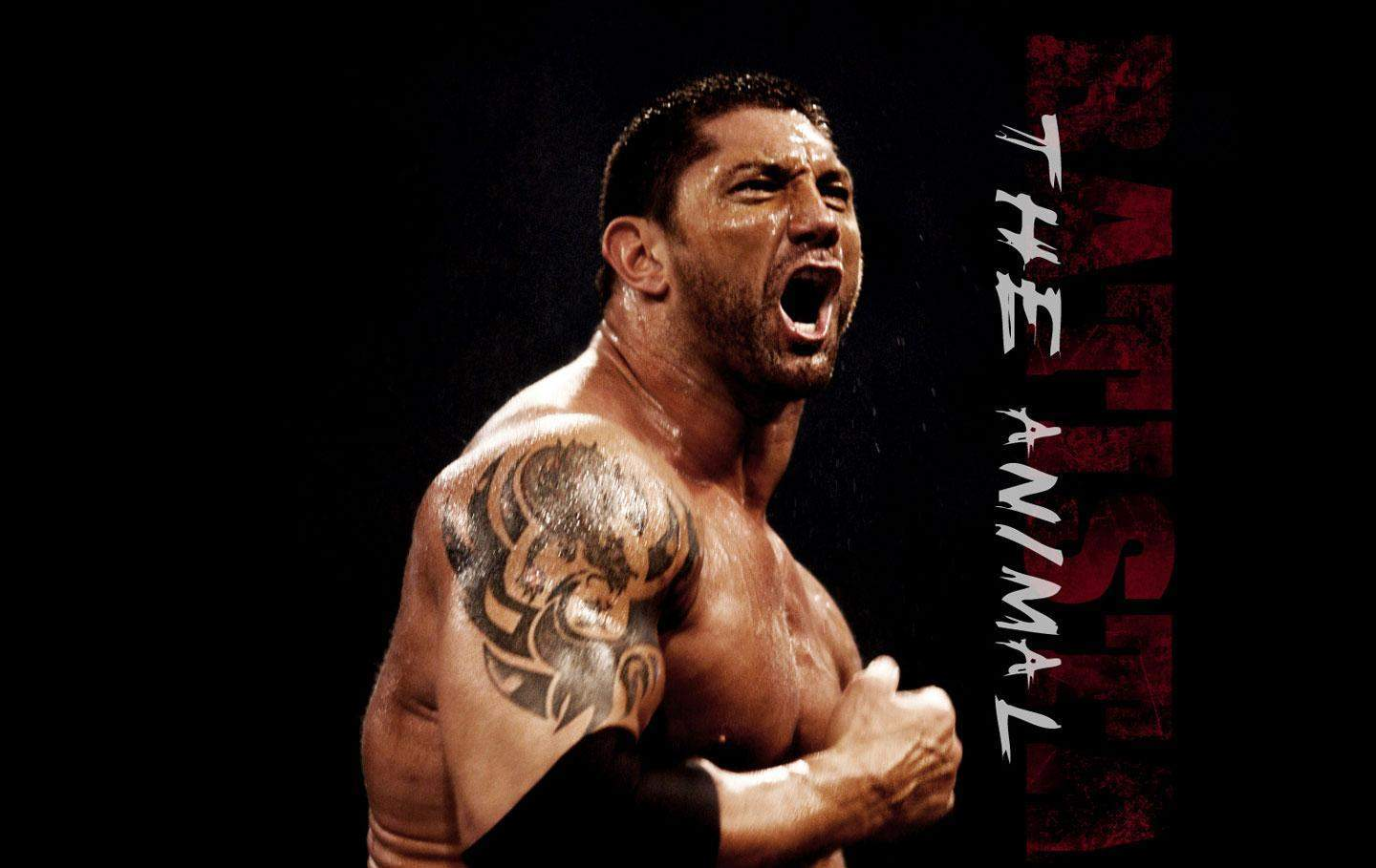 http://3.bp.blogspot.com/-n_io-Xzlscw/T1CKnJY8P8I/AAAAAAAABH4/cAw9LLQn-3w/s1600/wallpaper-of-the-animal-batista.jpg