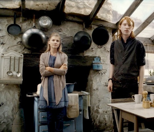Moon To Moon The Home Of Bill Weasley And Fleur Delacour