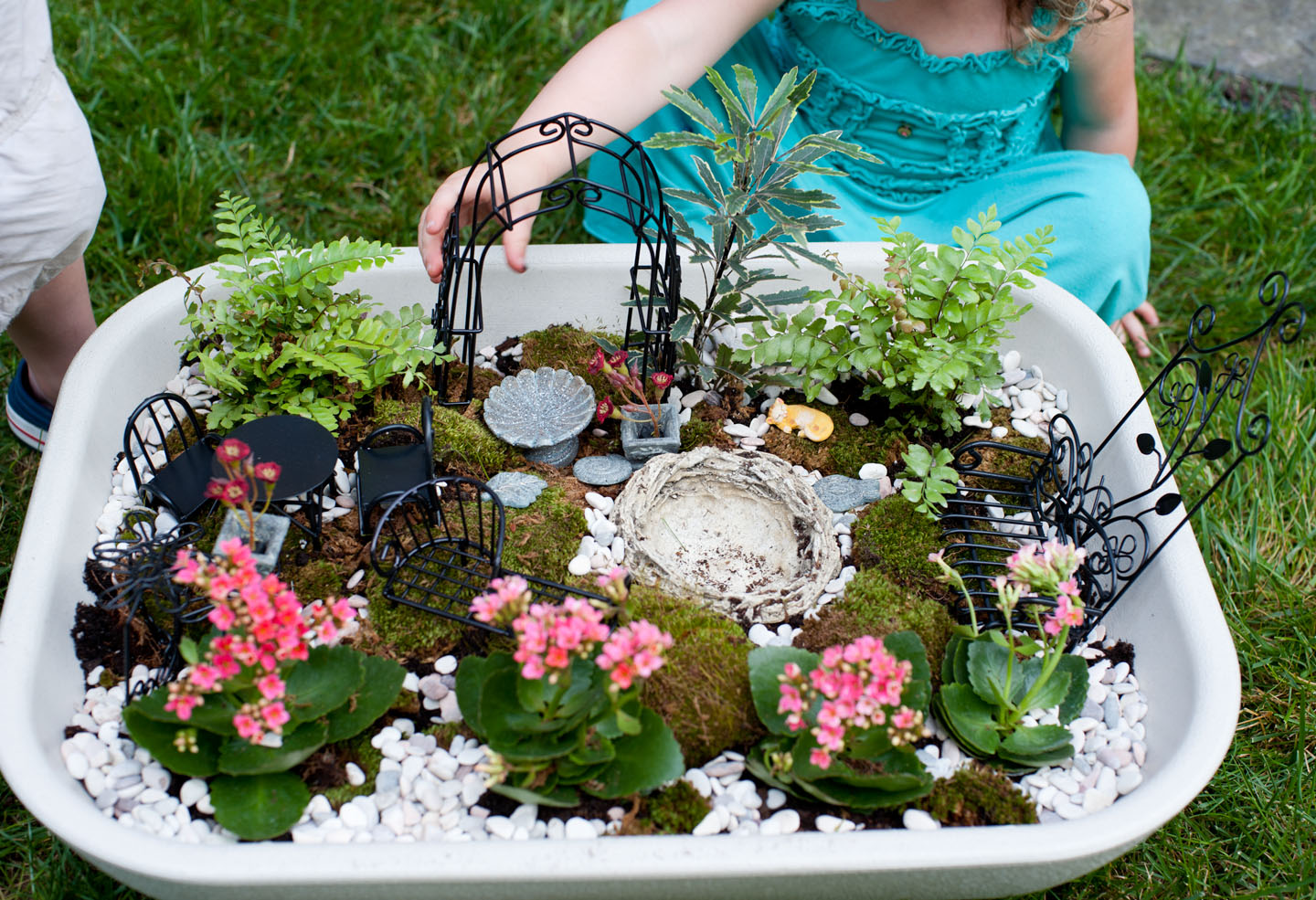 Snips And Snails And Puppy Dog Tails How To Assemble A Fairy Garden