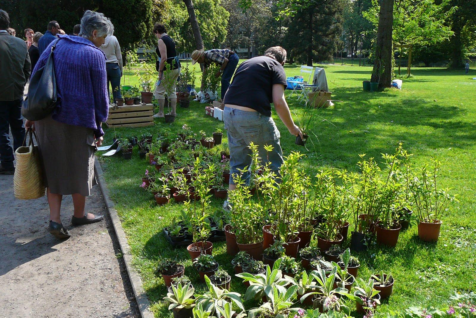 Les jardins du laveu bourse aux plantes du 1er mai for Bd du jardin botanique 50