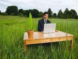 Ideas de negocios verdes en la actualidad