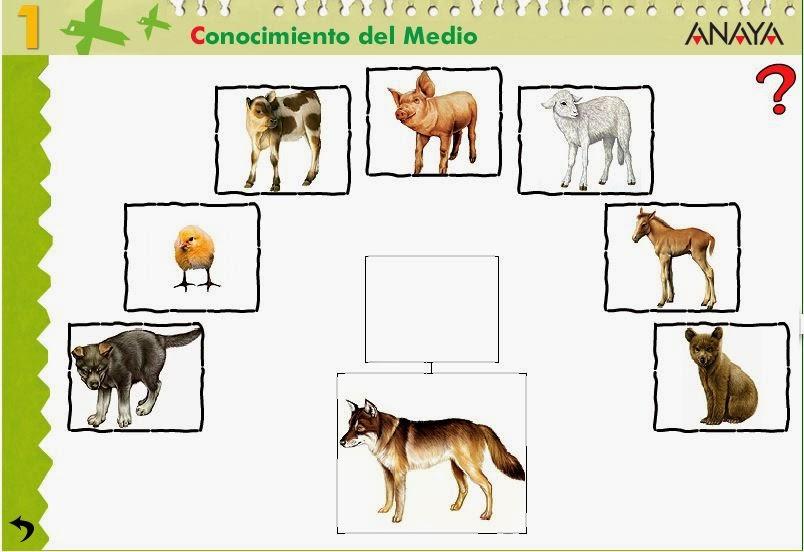 http://centros.edu.xunta.es/ceipcampolongo/intraweb/Recunchos/1/Recursos_Anaya/datos/03_cmedio/03_Recursos/actividades/2losAnimales/act3.htm
