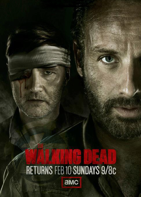 The Walking Dead S03E09 (Dual Audio) HDTV XviD
