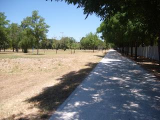 Camino del parque por el que corre la gente, tiene árboles y sombra a lo largo de todo el recorrido.
