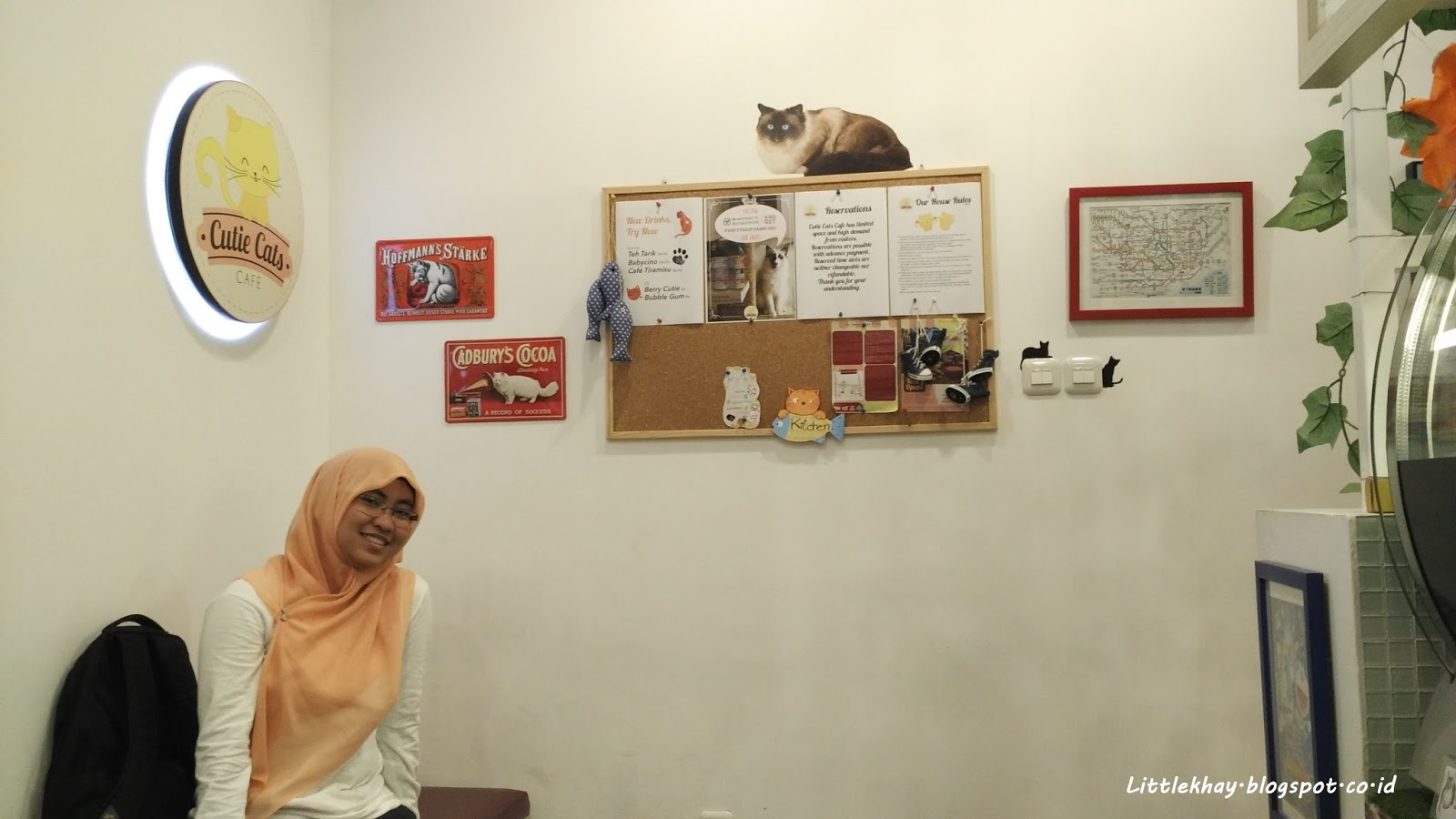 Little Khay I M A Cat Person I M At Cutie Cat Cafe