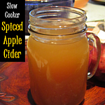 http://theshadyporch.blogspot.com/2013/10/slow-cooker-spiced-apple-cider.html