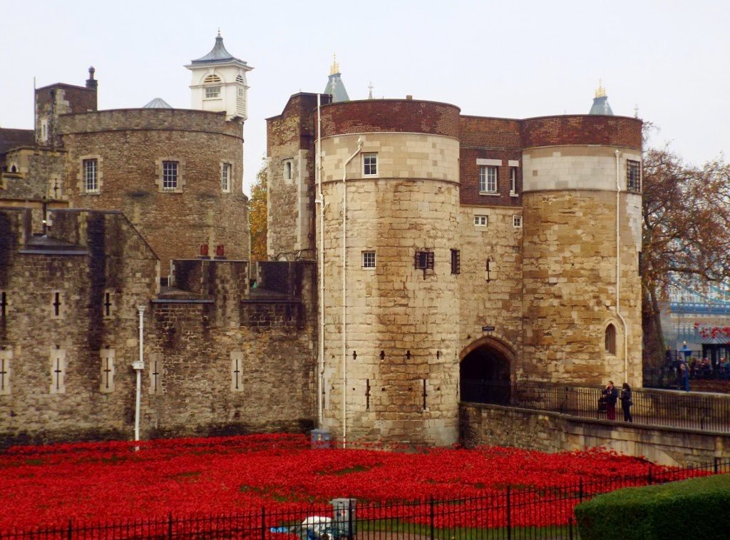 Poppies outside the Tower of London after Rememberance Day, commemorating the First World War